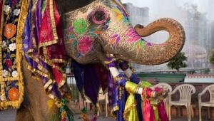 Страна Индия картинки
