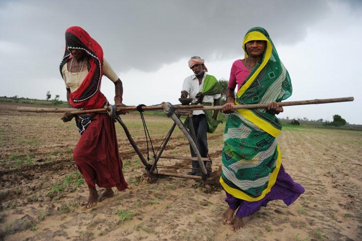 Работа в Индии фото