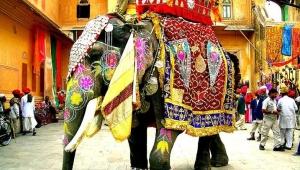 Куда поехать в Индию фото